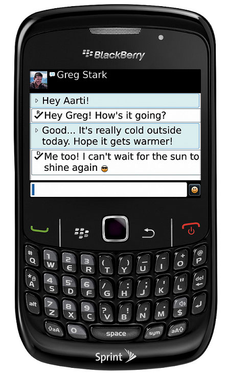 BlackBerry Curve 8530 Black